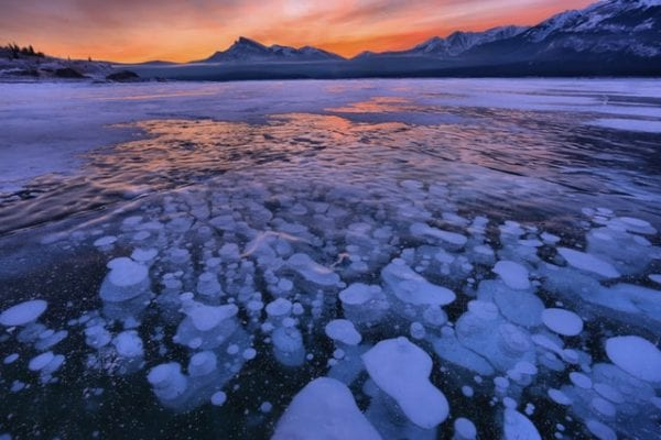 Abraham Lake: The Best Guide For Every Tourist 1