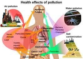 Take Action & Reduce Pollution: It Starts With You 1