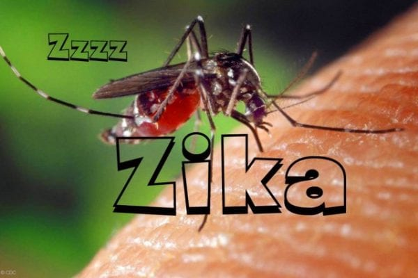 13 Things You Should Know About The Not-So-Catastrophic Zika Virus! 16
