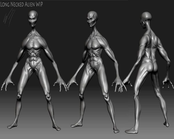 What Aliens May Look Like? 4