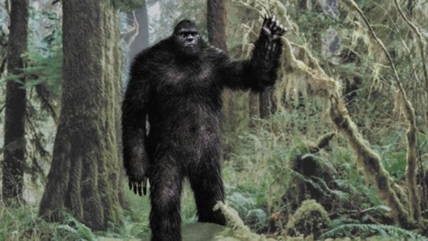The Mystery of Bigfoot 5