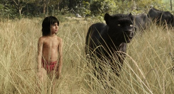 <strong>The Jungle Book</strong> (2016) Movie Still