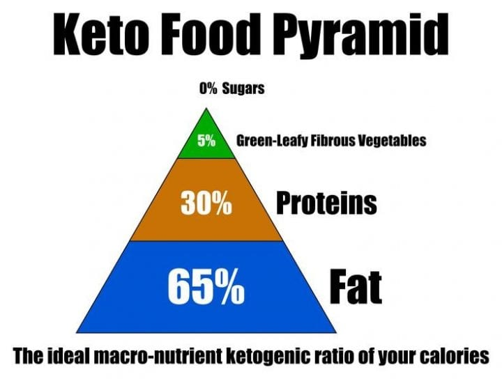 """Fat Doesn't Make You Fat""- All About The Ketogenic Diet 13"