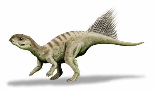 The Top Cute Baby Dinosaurs Ever 5
