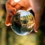 Environmental Mystery: 25 Interesting Facts About the Environment 21