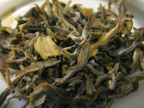 Ultimate Guide To White Tea With 10 Benefits 4