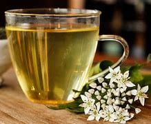 Ultimate Guide To White Tea With 10 Benefits 1