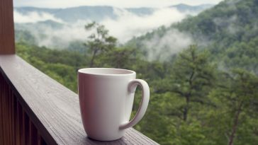 Smoky Mountain Vacation: The Ultimate Guide 7