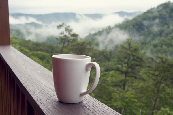 Smoky Mountain Vacation: The Ultimate Guide 1